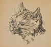 Study of the Head of a Cat, Facing Left